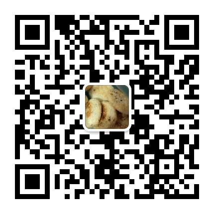 叙永县水尾范德森椒盐火肘月饼介绍 博客分享 第5张